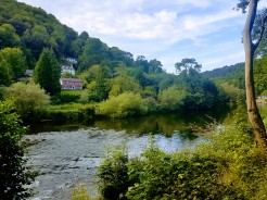 Symonds Yat, Forest of Dean, UK